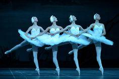 Act II of the Mariinsky Ballet's Swan Lake. With Olesya Novikova as Odette and Kimin Kim as Siegfried. Ballet Pictures, Dance Pictures, Dance Photos, Shall We Dance, Lets Dance, Australian Ballet, Ballet Companies, Pretty Ballerinas, Russian Ballet