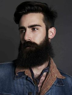 Beard Taylor
