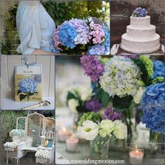 Hydrangea my favorite flower, simple aswell as sophisticated... Let her dress your Wedding!