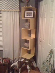 Easy Easy 60 minute diy Book Shelf/ Display Piece!!! CHeap Fast and CUTE