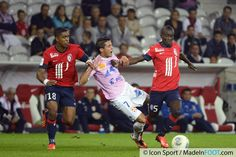 Photos Foot - Franck BERIA / Facundo BERTOGLIO / Idrissa GUEYE - 24.09.2013 - Lille / Evian Thonon - 7eme Journee de Ligue 1