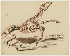 Eugène Delacroix, Squelette de cheval, Louvre