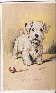 Sealyham Terrier Puppy Dog-Terrier Puppy artist signed Mac.Lucy Dawson m662 by postcardcity, via Flickr