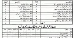 Punjab Social Security Hospital jobs 11th July 2017