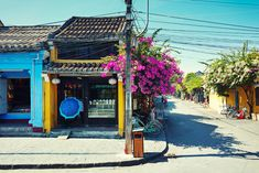 Planning a Trip for a US Family to Vietnam - David's Been Here Hoi An, Trip Planning, Vietnam, How To Plan, Travel, Flower, Viajes, Traveling, Flowers
