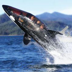 The Killer Whale Submarine