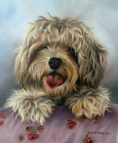 Wildlife paintings, wildlife drawings and pet portraits. Wildlife Paintings, Wildlife Art, Cute Little Dogs, Cute Dogs, Cross Paintings, Animal Paintings, Dog Photos, Dog Pictures, Popular Paintings