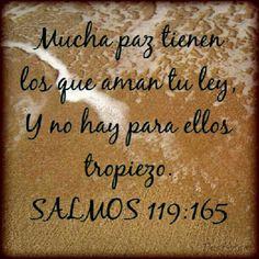 Psalms 119:165
