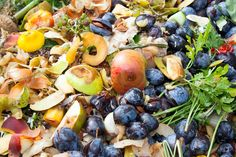 World Loses Roughly 20% of Food to Waste and Overeating