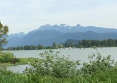 Pitt River Traboulay Trail port coquitlam