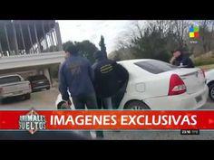 Animales Sueltos mostró la intimidad de la detención de Castillo y de lo...