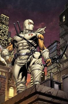 """Storm Shadow- GI-Joe-(COBRA)---AKA : Arashikage, Thomas (Tommy) S.---ninja-POWERS: expert in covert operations-8th degree black belt in several martial arts-can endure unimaginable amounts of hardship/pain-moves with blinding speed-can scale sheer walls with bare hands and feet- expert with a long bow, katana, throwing stars and nunchaku sticks-Current comic title """"GI- Joe"""""""