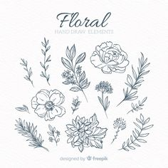 Discover thousands of free-copyright vectors on Freepik Botanical Drawings, Botanical Illustration, Graphic Design Illustration, Flash Art, Floral Drawing, Floral Watercolor, Tattoo Project, Draw On Photos, Simple Doodles