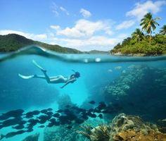 Snorkeling in beautiful Fernando de Noronha