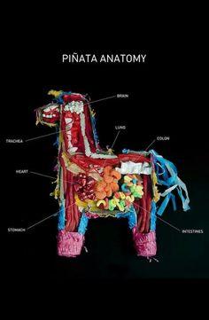 Anatomia de la piñata mexicana.