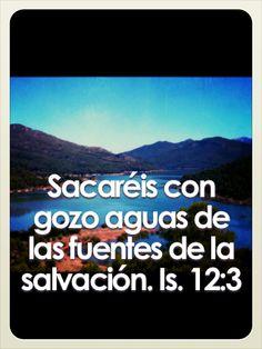 Isaías 12:3 Sacaréis con gozo aguas de las fuentes de la salvación. ♔