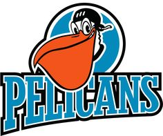 The New Orleans Pelicans? That's Right, Don't Laugh. Hockey Logos, Ice Hockey Teams, Team Logo, New Orleans Pelicans, Sports Logo, Quilts, Google Search, Poster, Art
