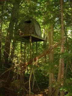 Please Post Pictures Of Your Elevated Deer Stand Not Ladder Stands Here Looking For