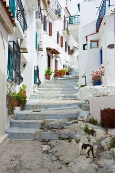 Skiathos   Greece (by Victor Van Dijk)