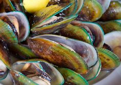 Some of the green lipped mussel benefits are well known today, yet there remains very little awareness about others. They are packed full of nutrients and can help restore our health in so many different ways.