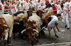 Festival de San Fermin es un festival muy famoso de Espana...     PETA puede decir lo que quieran, para mi, es una cultura de Espana!