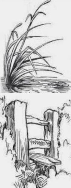 How to Draw Great Pencil Sketches - A skilled pencil artist can sketch a drawing with such fine details that it looks almost like a black and white photograph. How do they achieve this realistic effect? Drawing Lessons, Painting Lessons, Drawing Techniques, Art Lessons, Pencil Art, Pencil Drawings, Art Drawings, Drawing Landscapes Pencil, Tree Pencil Sketch