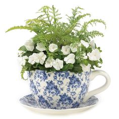 Blue Floral Teacup Garden Planter