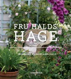 Fru Halds hage Iris, Planters, Plant, Window Boxes, Bearded Iris, Pot Holders, Flower Planters, Pots, Irises