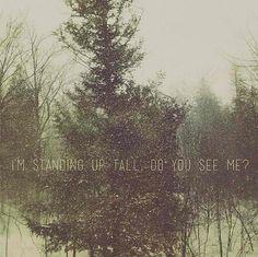 "I'm standing up tall, do you see me?  ""Winter"" - Kina Grannis  Photo credi: @tinastnhsr"