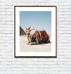Camel Poster/Boho Decor/Moroccan Poster/Bohemian Decor/Desert/Animal Print/Printable Camel/Art Wall/Art Prints/Desert/Home Decor/Dorm Room Camel Tattoo, Bohemian Decor, Boho, Desert Animals, Frame Download, International Paper Sizes, Etsy App, Beach Trip, All Design