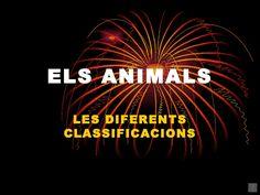 Les diferents classificacions dels animals.