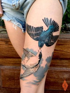 6. These Beautiful Birds