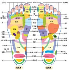 糖尿病も?「足を見ればわかる」今の健康状態!!|足裏の反射区を上手に使うと、早い人なら、便秘の反射区を押した10分後にトイレに行きたくなったりと、 身体に反応がでてきます。 パソコンで目や頭、肩コリがある時は、親指と、付け根、足指が張っているのがわかると思うので、 そこを強めで押しながら流すと、不思議と身体の痛みがとれ、目がすっきりとします。 マッサージする時間がない人は、足浴をしながら、ゴルフボール等を入れて足裏で転がして下さい。 足は第二の心臓と言われるくらい大切なので、できれば、毎日足を見て、自分の健康状態を見る事 がお勧め