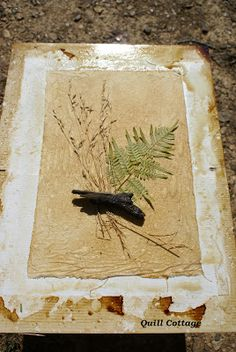 SUN PRINTING FABRIC WITH COFFEE AND NATURE ELEMENTS...