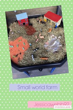 Small world farm in a tuff spot. Straw, lentils, beans and a tin foil pond. Created with @vicky0971. EYFS