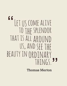 """see the beauty in the ordinary things"" -Thomas Merton Quotable Quotes, Wisdom Quotes, Words Quotes, Quotes To Live By, Me Quotes, Sayings, Author Quotes, Quotes 2016, The Words"