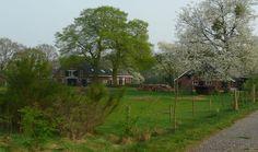 Natuurhuisje 26013 - vakantiehuis in Aalten