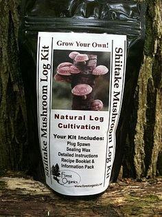 How To Grow Mushrooms | My Own Mushroom Farm#/877873/how-to-grow-mushrooms-my-own-mushroom-farm?&_suid=1359131390753023652545128092284