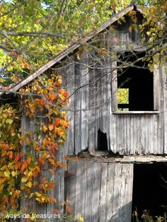 This old barn is haunted, and I find it hauntingly beautiful in the simplicity of growing old with grace.