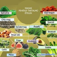 high protein foods, the truths about high protein food and what you must understand for healthy living High Protein Foods List, High Protein Recipes, Raw Food Recipes, Passover Recipes, Hemp Protein, Ideal Protein, What Is Spirulina, Soy Protein Isolate, Diet