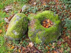 Bullaun stones featured in Irish folklore as the most powerful place to utter a blessing, or a curse. They are recognizable by their hollowed centre which are thought to have been used for baptisms in early Christian times.