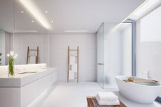 Tadao Ando frosted shower