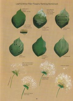It's always handy to know how to paint a dandelion and basic leaves.