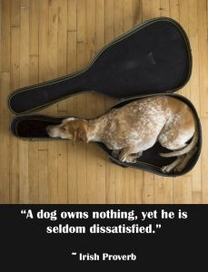 a dog owns nothing, yet he is seldom dissatisfied