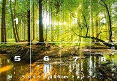 Papel Pintado Bosque 366 x 254 cm Fotomurales madera árboles luz del sol Incluyendo Pegamento livingdecoration: Amazon.es: Bricolaje y herramientas