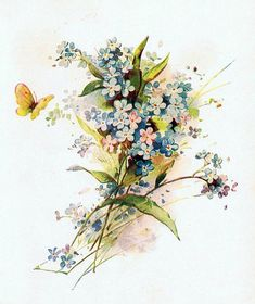 Butterfly Forget-Me-Not Bouquet