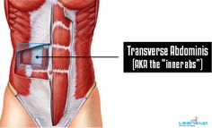 Do this 5-exercise super circuit to TIGHTEN, compress, and suck-in your INNER abs (aka your transverse abdominis). They're really important for strong posture and building a compact, flat core.