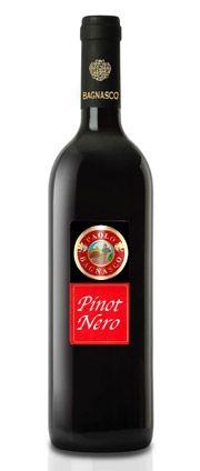 Pinot Nero I.G.T. Pavia fermo