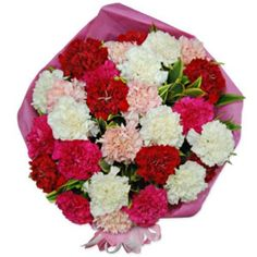 Carnation Carnival Discount Flowers, Carnations, Carnival, Delivery, Mardi Gras, Carnivals