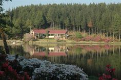 Pavetta Country House - Accommodation Magoebaskloof,Selfcatering Magoebaskloof,Flyfishing Magoebaskloof,Selfcatering Haenertsburg,Accomodation Haenertsburg,Flyfishing Haenertsburg,Pavetta Country House,Pavetta